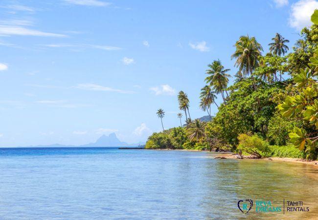 Lagoon, beach, tropical rainforest and coconut trees at Villa Tehere Dream, dream holiday on Tahaa island