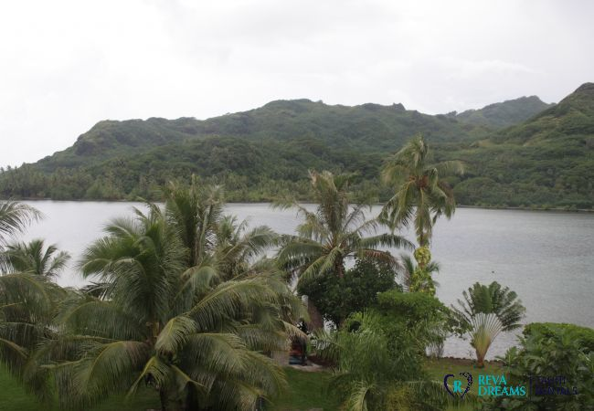 Apartment in Huahine-Iti - HUAHINE - Blue Lagoon Garden Studio