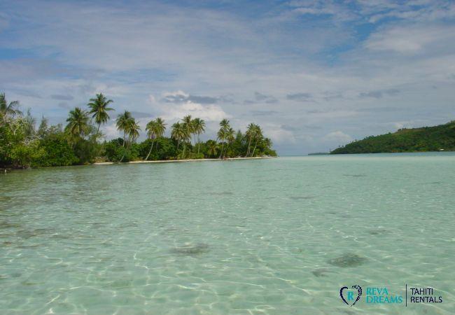 House in Huahine-Iti - HUAHINE - Blue Lagoon Fare