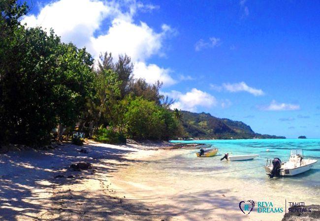 Plage de sable blanc et lagon du Fare Pacifique, location de vacances face à l'île de Moorea, Polynésie Française