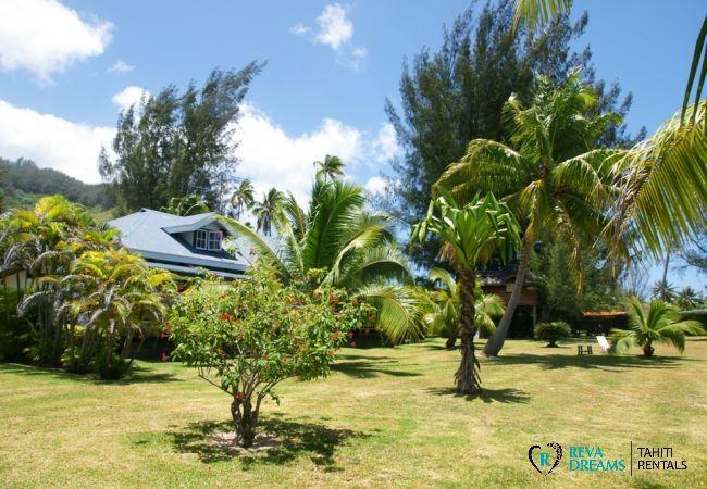 Grand jardin tropical de la Villa Teareva Dream, profitez du soleil de Polynésie Française, à Moorea au bord du lagon