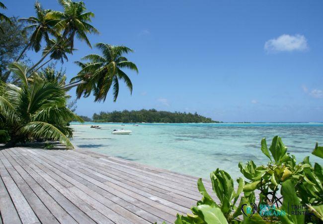 Terrasse de la Villa Teareva avec vue sur le lagon transparent et les palmiers, location de vacances sur l'île de Moorea