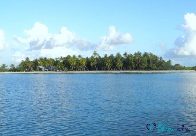Extérieur - Motu Fafarua - Tahiti In Style - Polynésie française