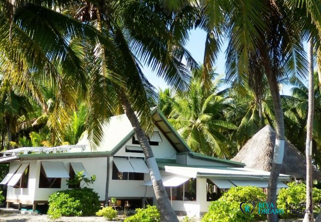 Façade - Motu Fafarua - Tahiti In Style - Polynésie française