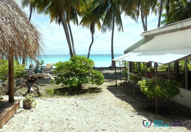 Jardin - Motu Fafarua - Tahiti In Style - Polynésie française