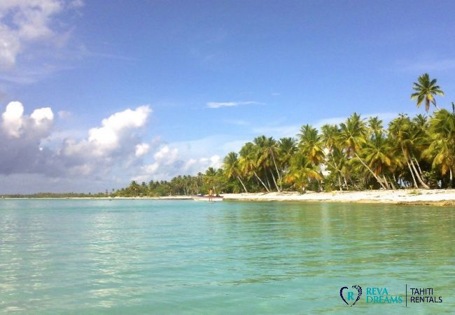 Plage - Motu Fafarua - Tahiti In Style - Polynésie française