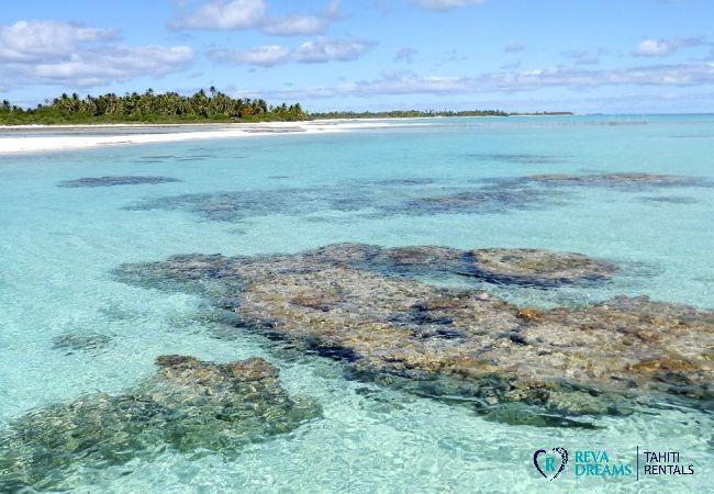 Vue lagon - Motu Fafarua - Tahiti In Style - Polynésie française