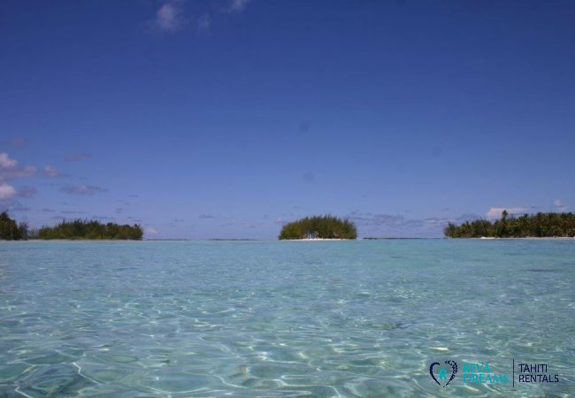 Lagon - Motu Bora Bora - Tahiti In Style - Polynésie française