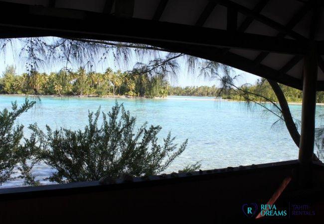 Vue plage - Motu Bora Bora - Tahiti In Style - Polynésie française