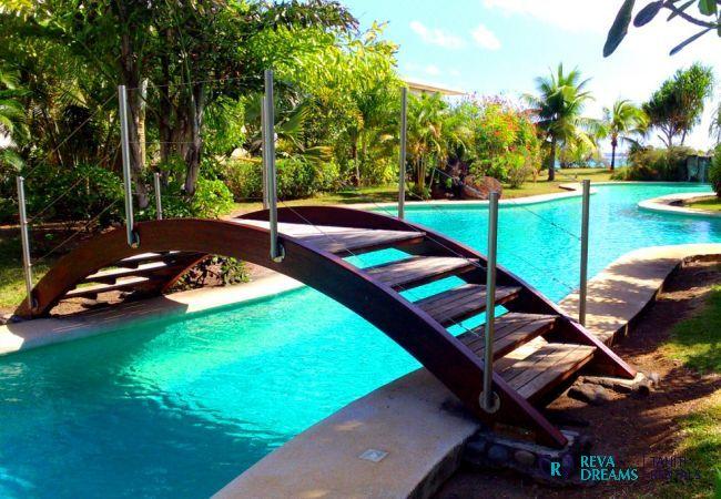 Piscine à l'ombre des palmiers pour une location de vacances au calme sur l'île de Tahiti, Polynésie Française