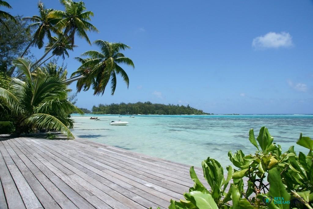 Belle vue de la Villa Teareva Dream, Moorea: palmiers, eau turquoise et sable blanc.