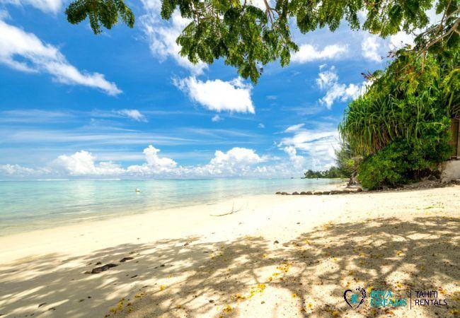 Belle plage à Fare Tiki Dream location saisonnière sur l'île tropicale de Moorea, à Polynésie Française