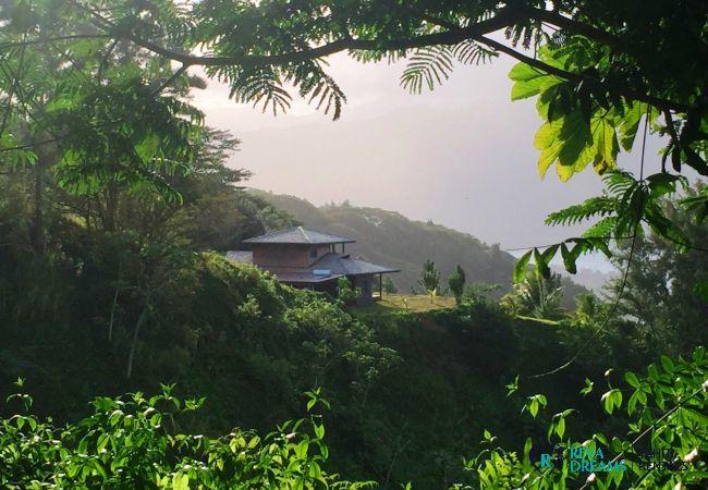 Vue sur la villa, au cœur de la forêt tropical, sur les montagnes de Tahiti