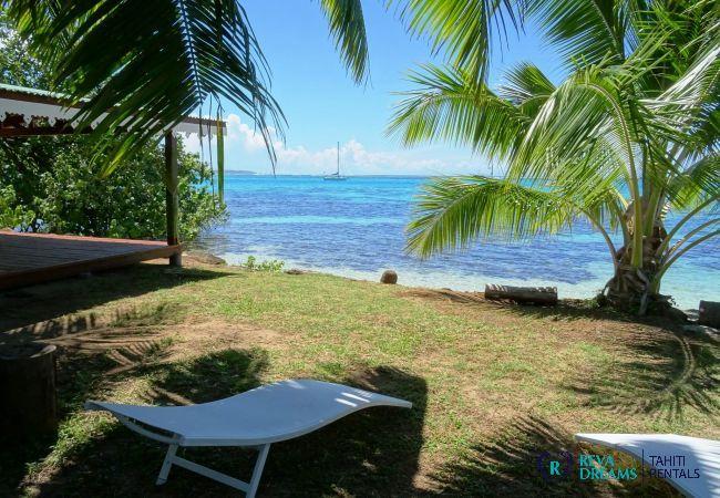Jardin tropical avec transat, détendez-vous au Fare Iris sous les palmiers, Moorea