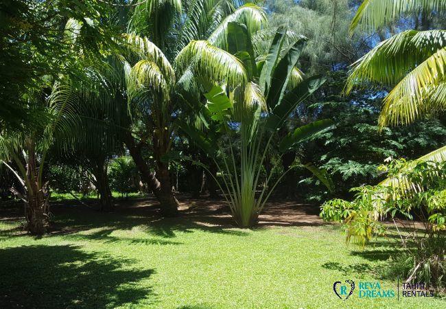 Bungalow à Raiatea - RAIATEA - Fare Imivai